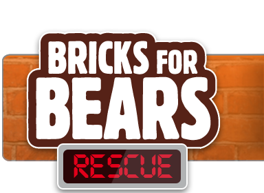 bricks-for-bears.png